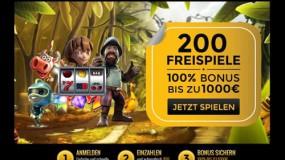 Casino Bonus - 29305