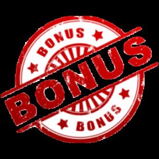 Casino mit Bonus - 35951