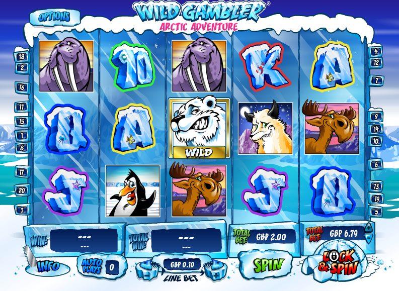 Wild Gambler - 17407